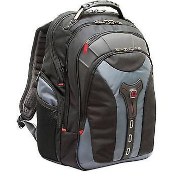 Wenger Pegasus 600639 laptop rygsæk 40, 6 cm (16), 43, 2 cm (17), 43, 4 cm (17, 1), 43, 9 cm (17, 3)