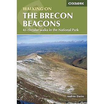 Walking on the Brecon Beacons by Andrew Davies