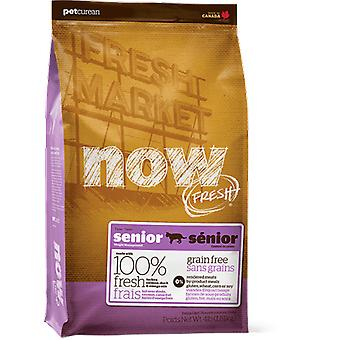 Now Grain Free for Senior Cat (cats, food, fodder)