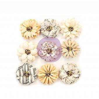 بريما التسويق جميلة الزهور شاحب الأنواع الحلوة