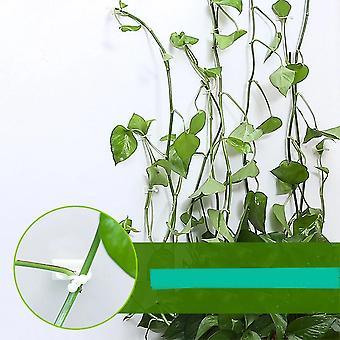 Usynlig væg Rattan Clamp Clip Vine Klatring Sticky Hook Rattan fast beslag