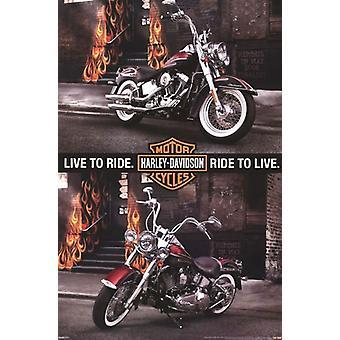 Harley Davidson - två cyklar affisch affisch Skriv