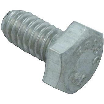 Pentair 98210800 Slotted Hex Head Nut Screw Replacement Pool or Spa Light