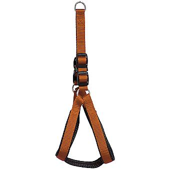 Boby Arnes Lisabobo (Dogs , Collars, Leads and Harnesses , Harnesses)
