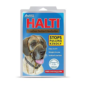 HALTI cão Cabrestos acolchoado preto tamanho 4, Extra grande