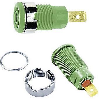 Stäubli SLB4-F6,3 Safety jack socket Socket, built-in Green 1 pc(s)