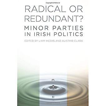 Radikale oder redundante: kleinere Parteien in der irischen Politik