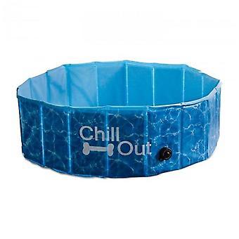 كل الكفوف الكلب الحيوانات الأليفة البرد خارج حمام السباحة