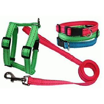 Sandimas Neo necklace 20x350-450 mm (Dogs , Collars, Leads and Harnesses , Collars)