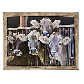 Lap cushion Calves in Stable