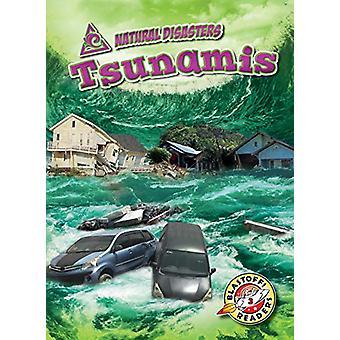 Tsunamis by Betsy Rathburn - 9781644870280 Book