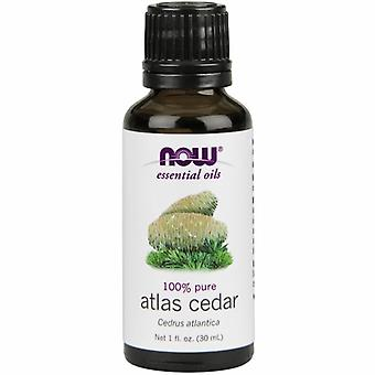 Now Foods Atlas Cedar Oil, 1 OZ