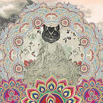 Gypsy Mamba - Magnetic Syndromes [Vinyl] USA import
