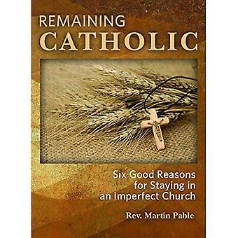Gjenværende katolske: Seks gode grunner til å bo i en ufullkommen kirke