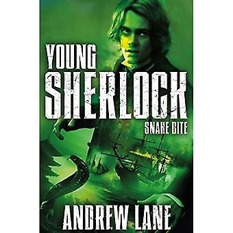 Morsure de serpent (Young Sherlock Holmes)
