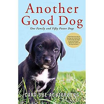 Een andere goede hond - één familie en vijftig Foster honden