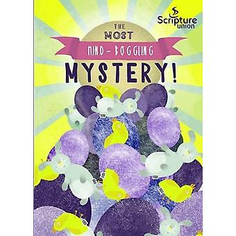 The Most Mind-Boggling Mystery (8-11s) by Gemma Willis - Hannah Wheel
