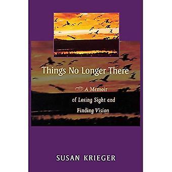 Dingen niet langer daar: A Memoir of uit het oog verliezen en het vinden van de visie