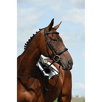 Collegiate Syntovia+ Padded Raised Cavesson Bridle - Zwart