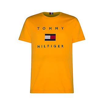 Tommy Hilfiger Flagge Tee Sonnenwende