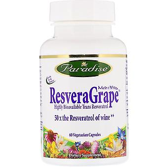 Paradise Herbs, ResveraGrape, 60 capsules végétariennes
