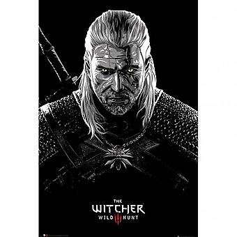The Witcher Toxicity Poisoning Poster
