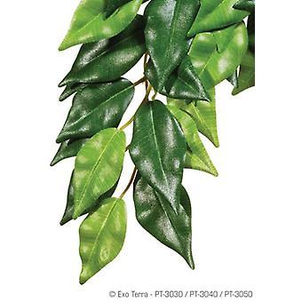 エグソテラエグテラシルクフィカス、大型(爬虫類、装飾、人工植物)
