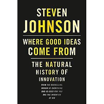 Waar goede ideeën vandaan komen: de natuurlijke geschiedenis van innovatie