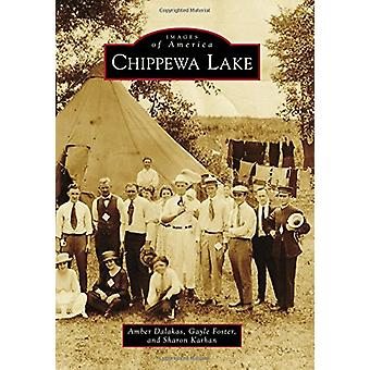 Chippewa Lake by Amber Dalakas - 9781467126663 Book