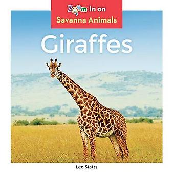 Giraffes by Leo Statts - 9781680792010 Book