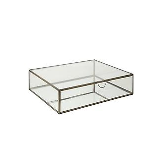 Light & Living Deco Box 36x28x9cm Alessina Antique Bronze And Clear Glass