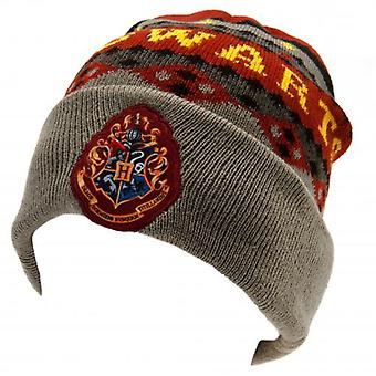 Harry Potter Knitted Hat Hogwarts GR