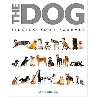 The Dog - Finding Your Forever by David Alderton - 9780785838258 Book
