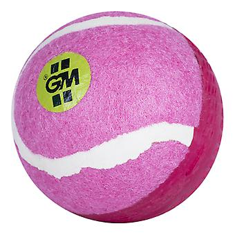 Gunn & Moore Swingking Cricket Ball Pink