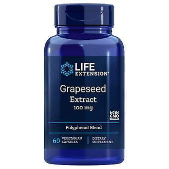Life Extension Grapeseed Extract, 100 mg, 60 Veg Caps