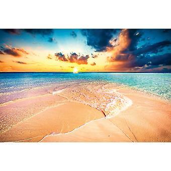 Taustakuva seinämaalaus trooppinen ranta (400x260 cm)