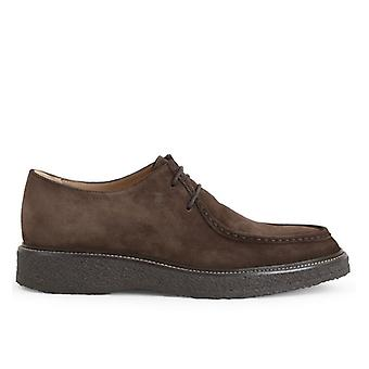 Tod&s Lace-up in Brown Suede Met Para Sole