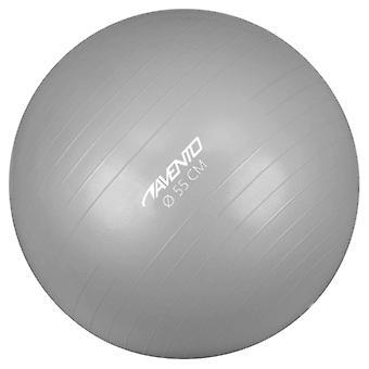 Avento Fitness/Gym Ball Dia. 55 Cm Silber