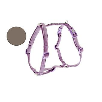 Ferribiella Fuss-Comfort imbracatura regolabile marrone