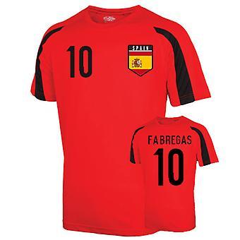Spain Sports Training Jersey (fabregas 10) - Kids