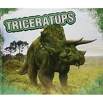 Triceratops (Pebble Plus: dinosaurer)