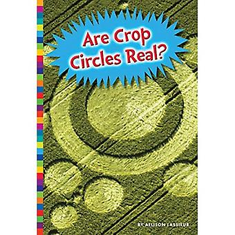 Are Crop Circles Real? (Unexplained: What's the Evidence?)