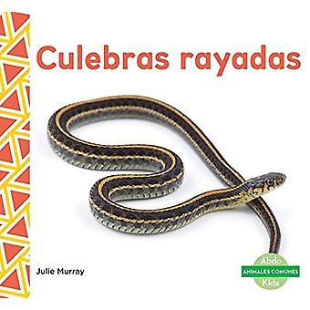 Culebras Rayadas (Garter Snakes) by Julie Murray - 9781624026027 Book