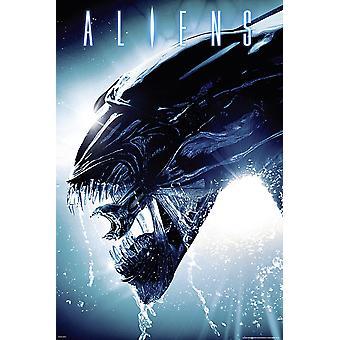 Aliens - Die Rückkehr Poster Side Splash