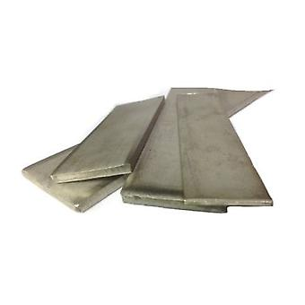 Platte staaf 50 mm X 3 mm X 300 mm T304 roestvrijstaal-300 mm lengte