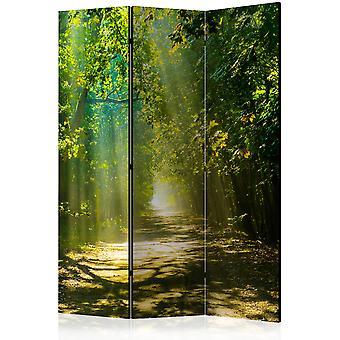 Artgeist Room Divider Road In Sunlight Room Dividers (Dekoracja , Parawany)