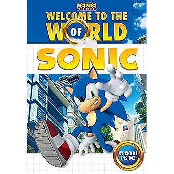 Välkommen till en värld av Sonic (Sonic the Hedgehog)