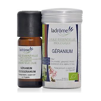 Geranium Bourbon organic essential oil 10 ml of essential oil