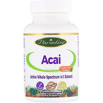 Paradise Herbs, Acai, 60 capsules végétariennes