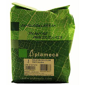 Plameca Yarrow Flower Dried (Food, Beverages & Tobacco , Beverages , Tea & Infusions)
